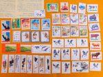 「 中国切手 未使用 54枚 中國人民郵政 切手 パンダなど」を買取させていただきました。